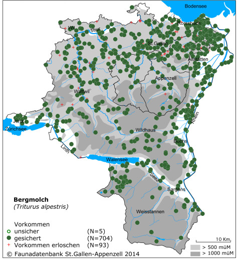 Amphibienkarte_Bergmolch